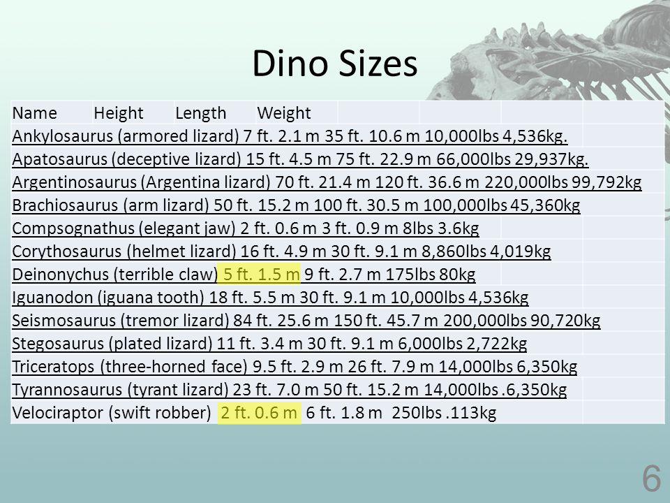 Did dinosaurs swim? 17