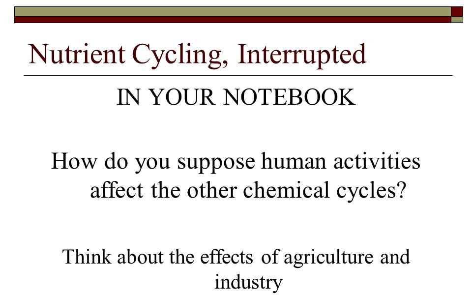 Nutrient Cycling, Interrupted IN YOUR NOTEBOOK How do you suppose human activities affect the other chemical cycles? Think about the effects of agricu