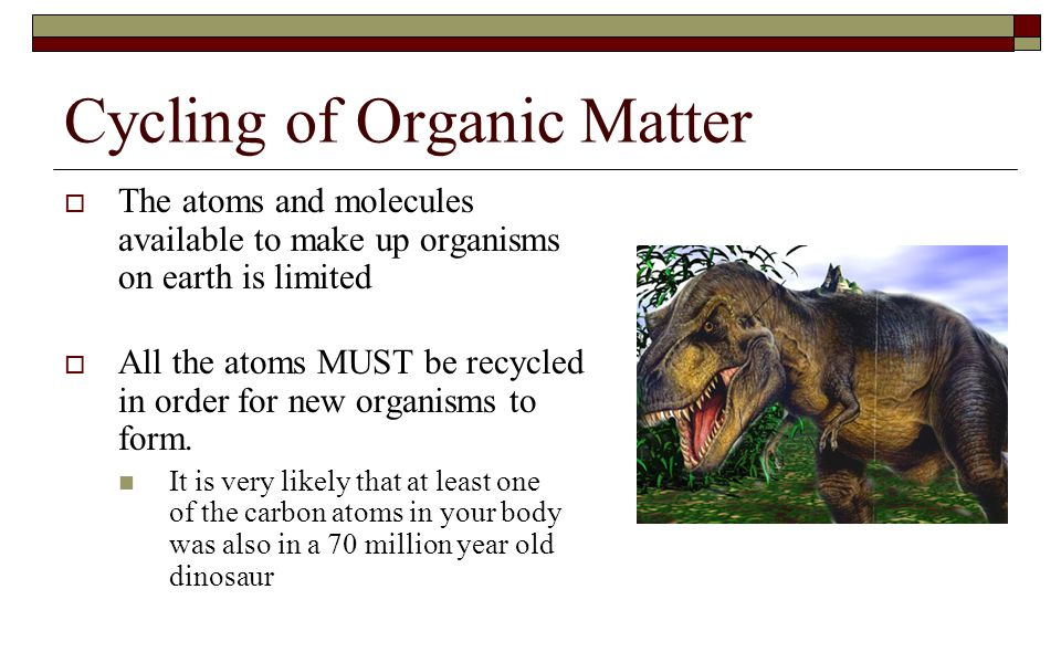 Cycling of Organic Matter  The atoms and molecules available to make up organisms on earth is limited  All the atoms MUST be recycled in order for n