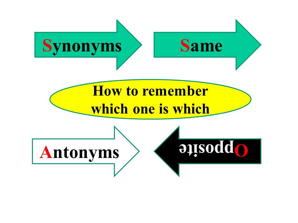 Synonyms Antonyms Review