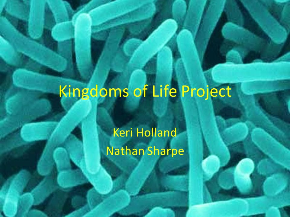 Kingdoms of Life Project Keri Holland Nathan Sharpe