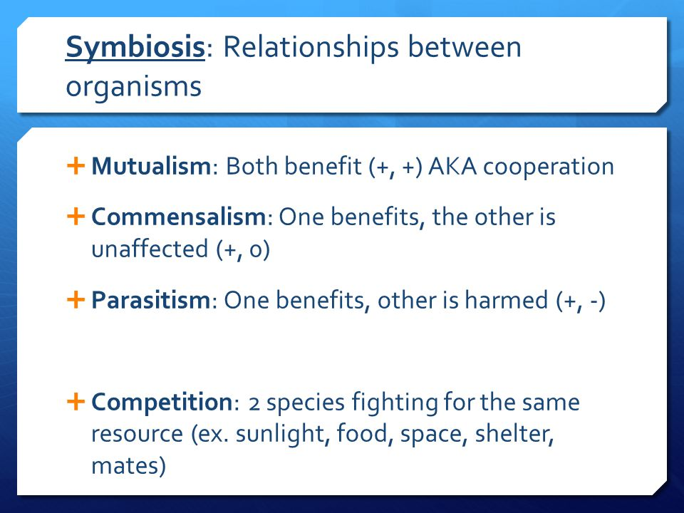Symbiosis: Relationships between organisms  Mutualism: Both benefit (+, +) AKA cooperation  Commensalism: One benefits, the other is unaffected (+, 0)  Parasitism: One benefits, other is harmed (+, -)  Competition: 2 species fighting for the same resource (ex.