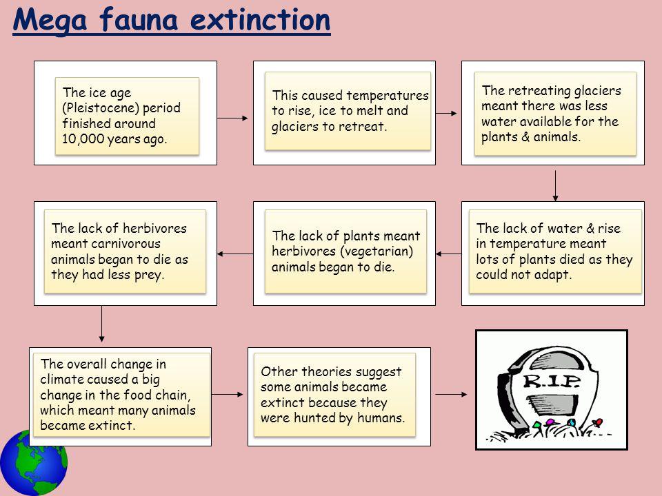 Mega fauna extinction The ice age (Pleistocene) period finished around 10,000 years ago. The ice age (Pleistocene) period finished around 10,000 years