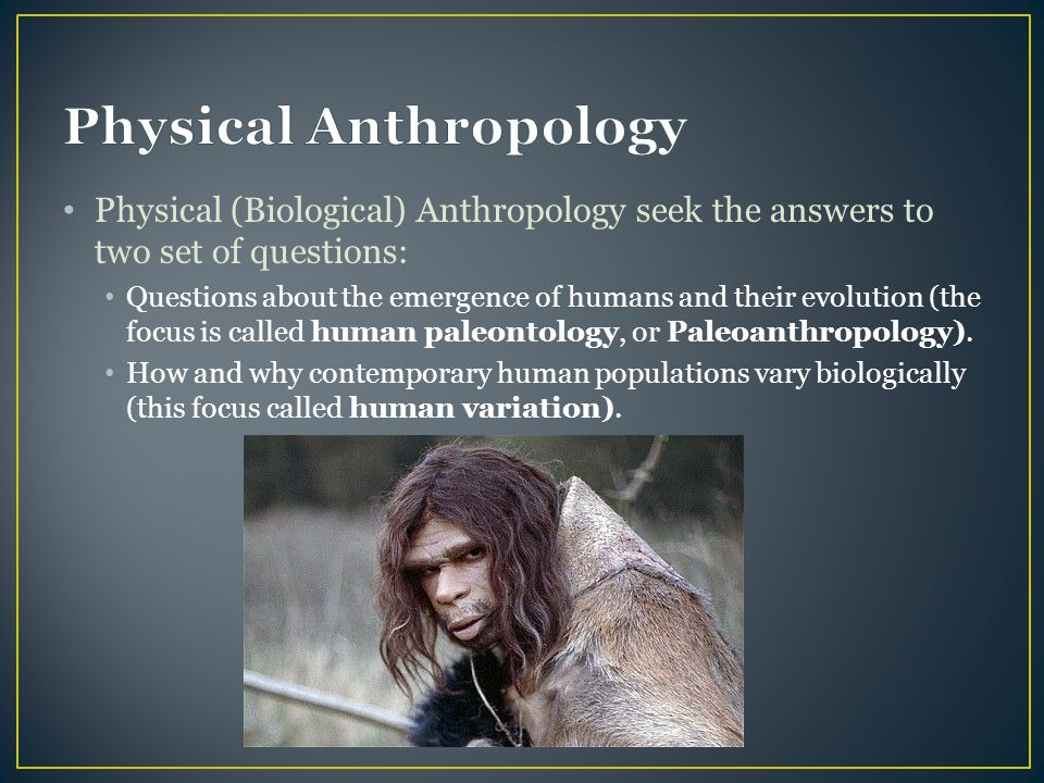 Physical (Biological) Anthropology seek the answers to two set of questions: Questions about the emergence of humans and their evolution (the focus is