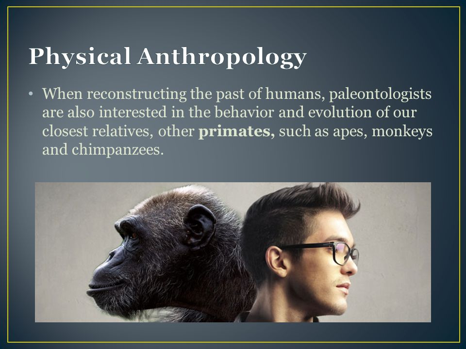 When reconstructing the past of humans, paleontologists are also interested in the behavior and evolution of our closest relatives, other primates, su