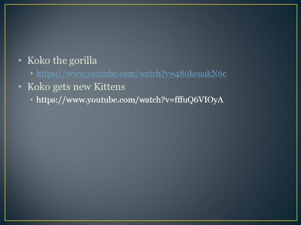 Koko the gorilla https://www.youtube.com/watch?v=480keuakN6c Koko gets new Kittens https://www.youtube.com/watch?v=fffuQ6VIOyA