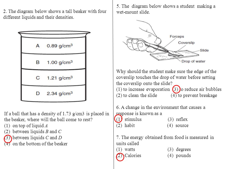 2. The diagram below shows a tall beaker with four different liquids and their densities. If a ball that has a density of 1.73 g/cm3 is placed in the