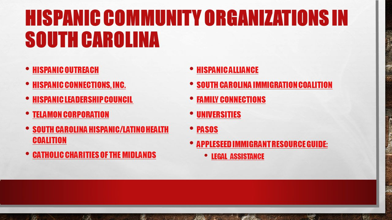 HISPANIC COMMUNITY ORGANIZATIONS IN SOUTH CAROLINA HISPANIC OUTREACH HISPANIC CONNECTIONS, INC. HISPANIC LEADERSHIP COUNCIL TELAMON CORPORATION SOUTH