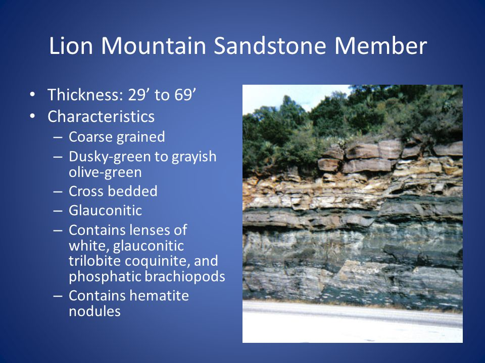 Lion Mountain Sandstone Member Thickness: 29' to 69' Characteristics – Coarse grained – Dusky-green to grayish olive-green – Cross bedded – Glauconitic – Contains lenses of white, glauconitic trilobite coquinite, and phosphatic brachiopods – Contains hematite nodules