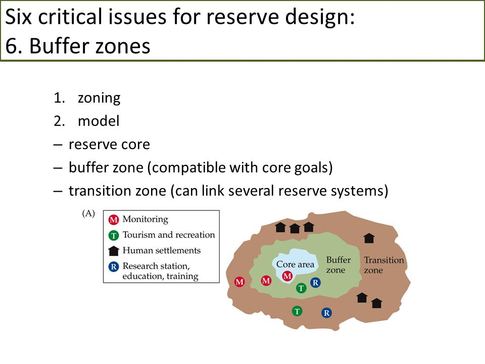 Six critical issues for reserve design: 6. Buffer zones 1.zoning 2.model – reserve core – buffer zone (compatible with core goals) – transition zone (