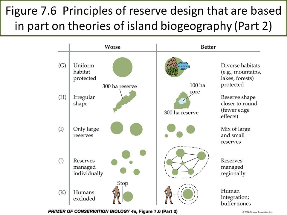 Figure 7.7 Population studies show that large parks and protected areas in Africa contain larger populations of each species than small parks