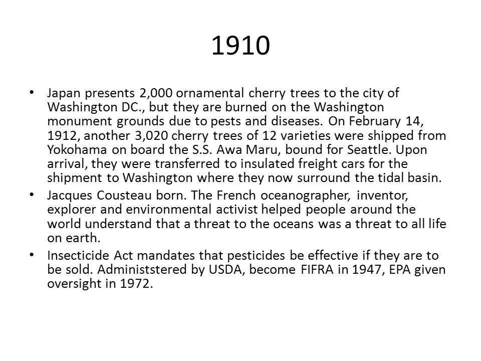 1910 Japan presents 2,000 ornamental cherry trees to the city of Washington DC., but they are burned on the Washington monument grounds due to pests a