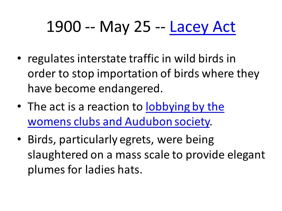 1900 -- May 25 -- Lacey ActLacey Act regulates interstate traffic in wild birds in order to stop importation of birds where they have become endangere