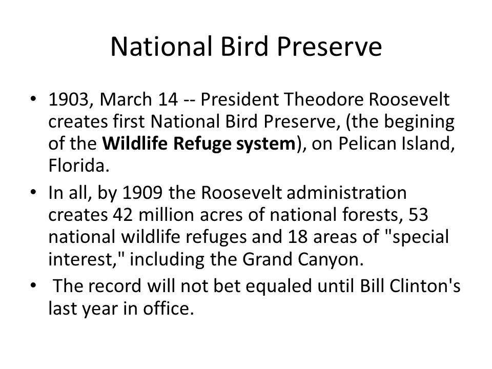 National Bird Preserve 1903, March 14 -- President Theodore Roosevelt creates first National Bird Preserve, (the begining of the Wildlife Refuge syste