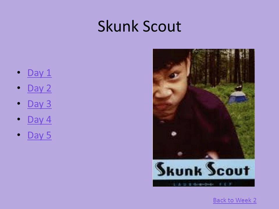Skunk Scout Day 1 Day 2 Day 3 Day 4 Day 5 Back to Week 2