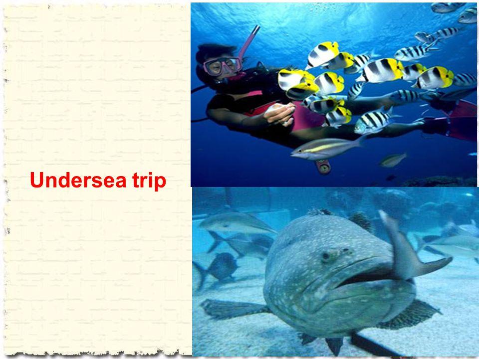Undersea trip