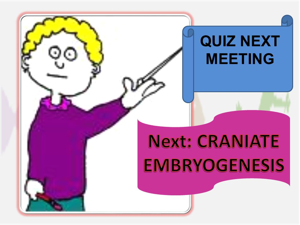 QUIZ NEXT MEETING