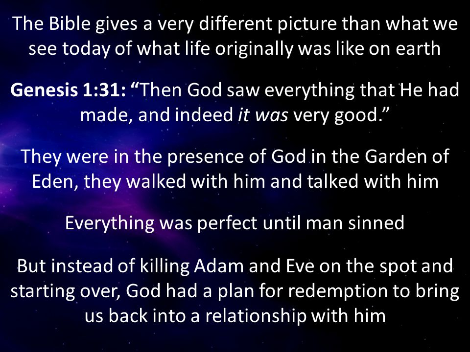 """The Bible gives a very different picture than what we see today of what life originally was like on earth Genesis 1:31: """"Then God saw everything that"""
