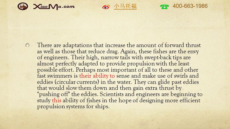小马托福 400-663-1986 There are adaptations that increase the amount of forward thrust as well as those that reduce drag.