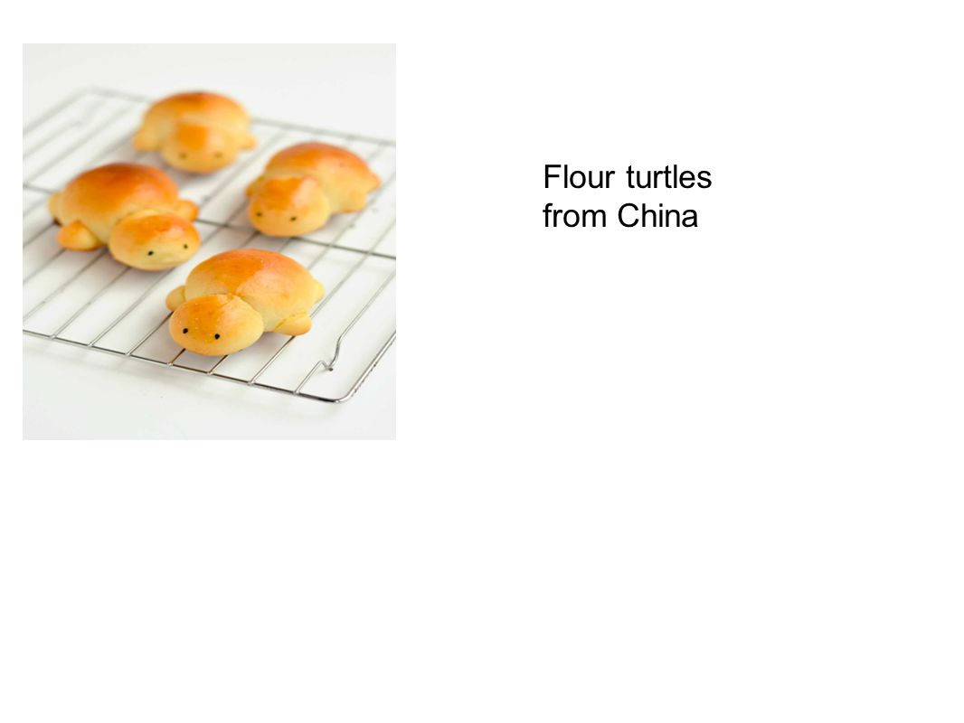 Flour turtles from China