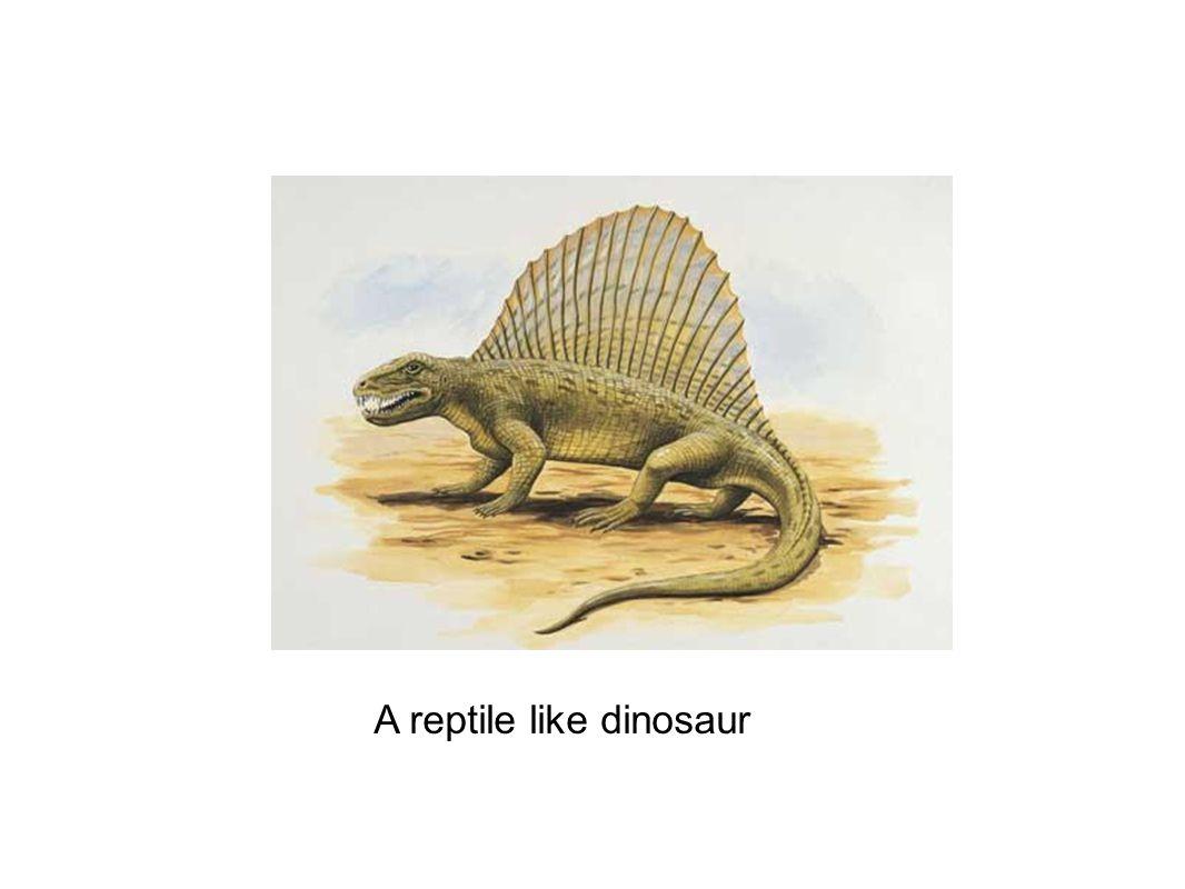 A reptile like dinosaur