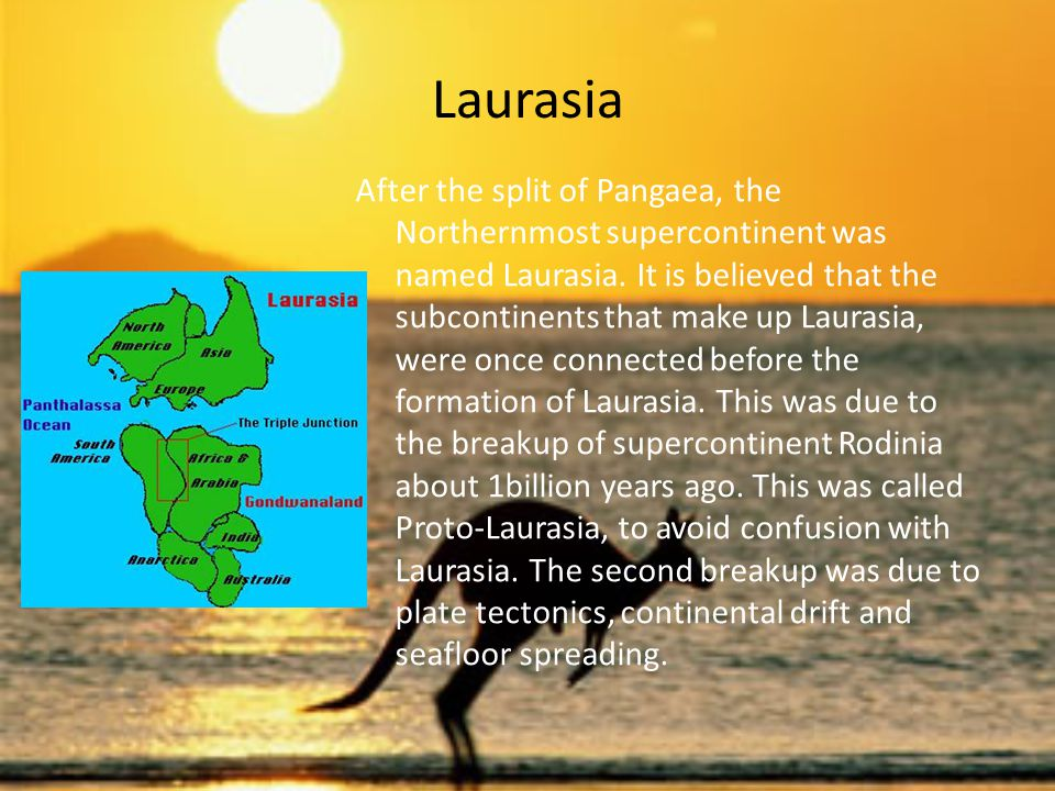 Timeline Jurassic Period (208-144 million years ago) 208 million years ago continental drift, Pangaea begins to break apart into Laurasia and Gondwana toward the end of the Jurassic Cretaceous Period (144-66 million years ago) 100 million years ago further continental drift, begins formation of modern continents 90 million years ago 88 million years ago Madagascar splits from India CENOZOIC ERA (66 million years ago to the present) extinction of the dinosaurs and other land animals heavier than 25 kg.