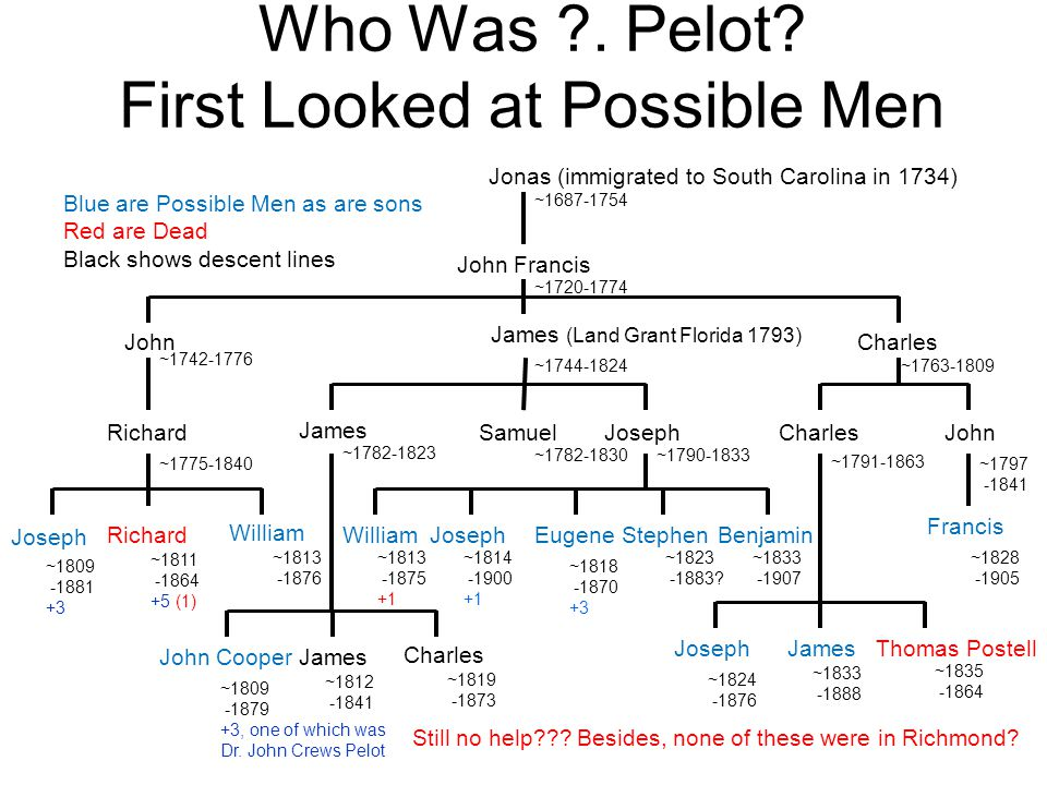 Who Was ?. Pelot? First Looked at Possible Men Jonas (immigrated to South Carolina in 1734) ~1687-1754 John Francis ~1720-1774 John ~1742-1776 James (