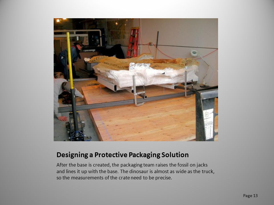 Designing a Protective Packaging Solution After the base is created, the packaging team raises the fossil on jacks and lines it up with the base. The