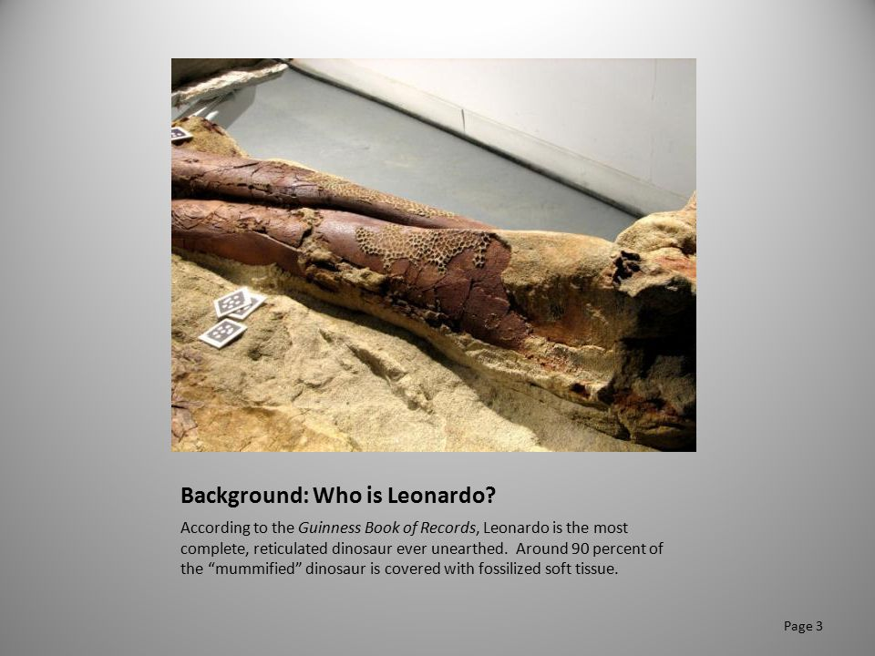 Background: Who is Leonardo? According to the Guinness Book of Records, Leonardo is the most complete, reticulated dinosaur ever unearthed. Around 90