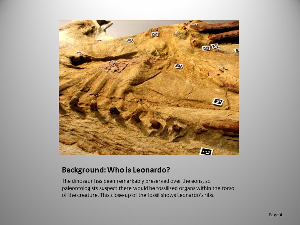 Background: Who is Leonardo? The dinosaur has been remarkably preserved over the eons, so paleontologists suspect there would be fossilized organs wit