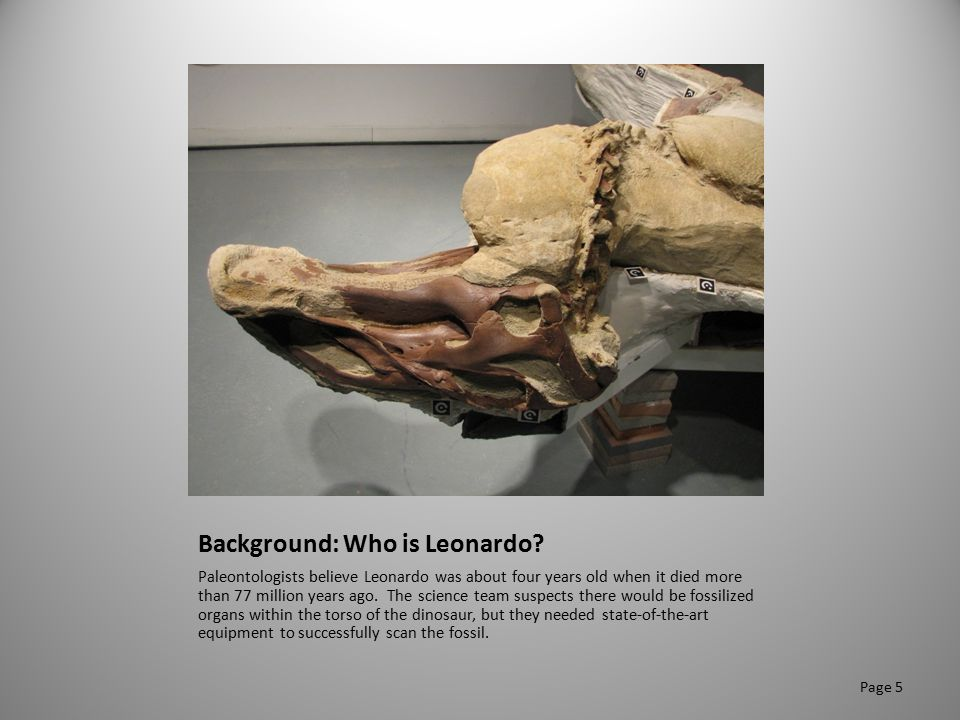 Background: Who is Leonardo? Paleontologists believe Leonardo was about four years old when it died more than 77 million years ago. The science team s