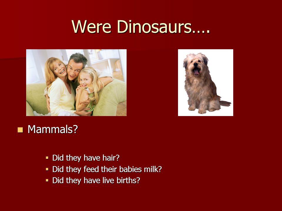 Were Dinosaurs…. Mammals. Mammals.  Did they have hair.