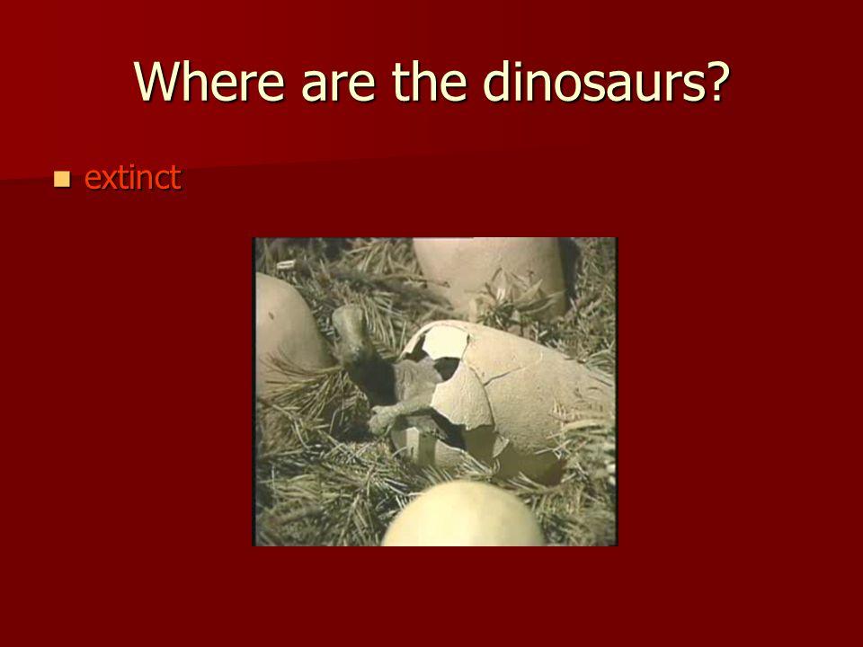 Where are the dinosaurs extinct extinct