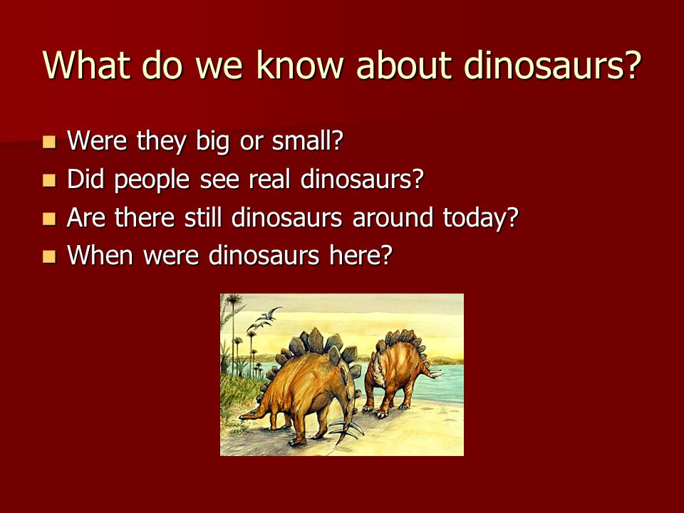 Fossils We know about dinosaurs because we found fossils in the earth.
