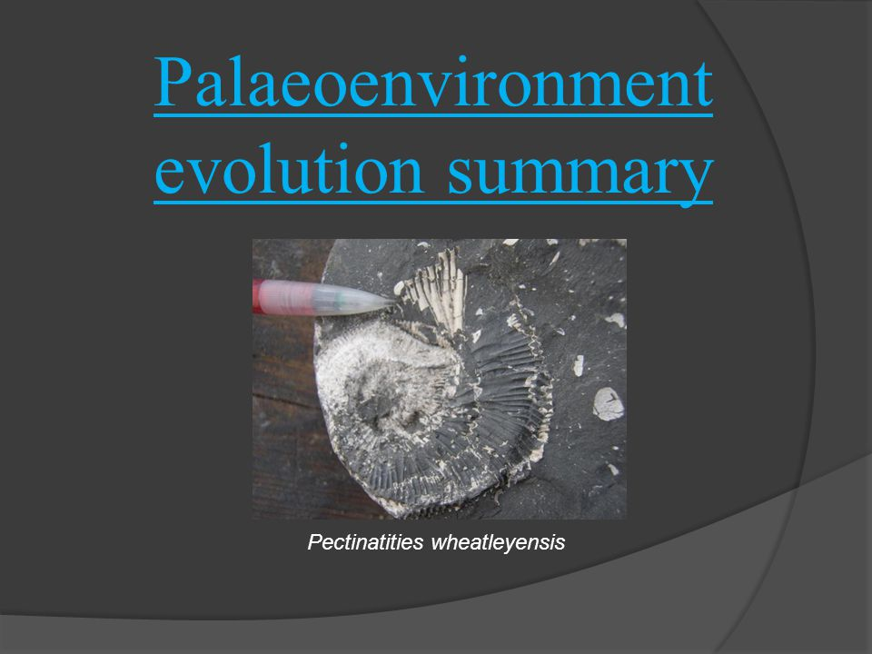 Palaeoenvironment evolution summary Pectinatities wheatleyensis