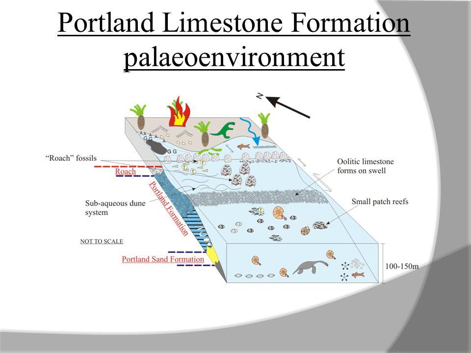 Portland Limestone Formation palaeoenvironment