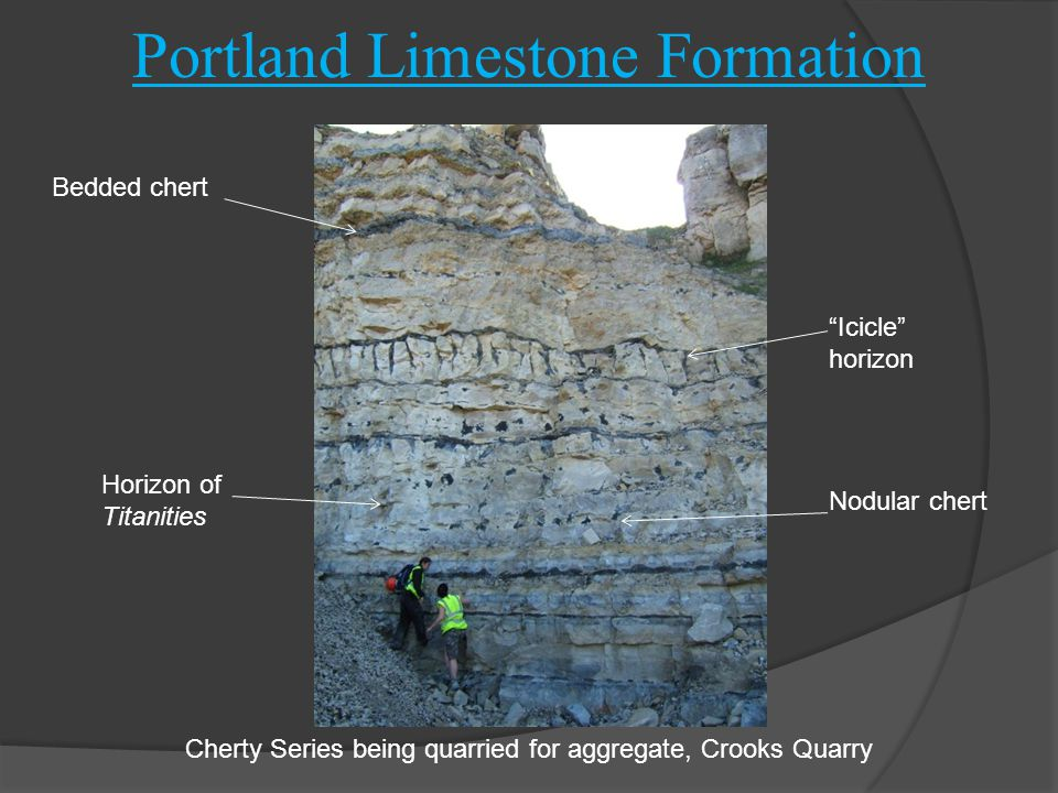 """Portland Limestone Formation Cherty Series being quarried for aggregate, Crooks Quarry Horizon of Titanities Bedded chert """"Icicle"""" horizon Nodular che"""