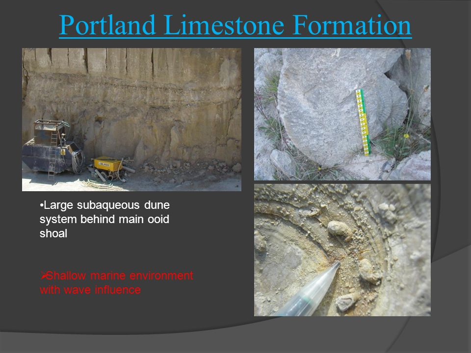 Portland Limestone Formation Freestone Series Oolitic limestone, sparse fine shell debris Oysters, bivalves, gastropods Titanites ammonite Patch reefs with oysters, Solenopora (sponge) and lithophagid (boring) bivalves Large subaqueous dune system behind main ooid shoal  Shallow marine environment with wave influence