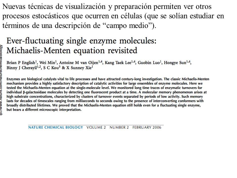 Nuevas técnicas de visualización y preparación permiten ver otros procesos estocásticos que ocurren en células (que se solían estudiar en términos de una descripción de campo medio ).