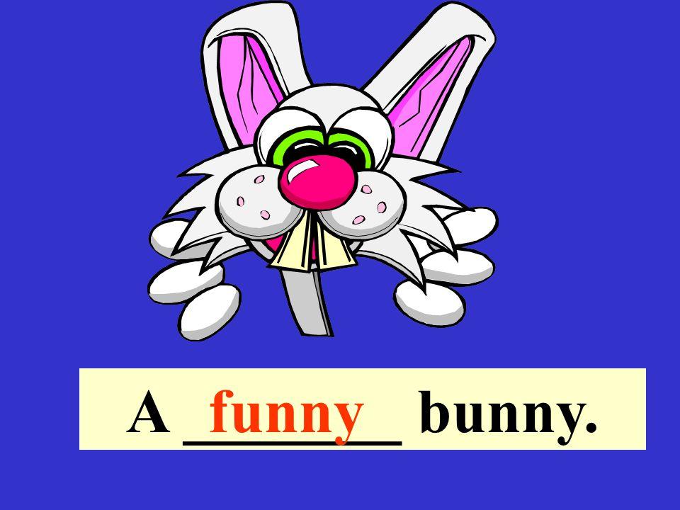 A _______ bunny.funny