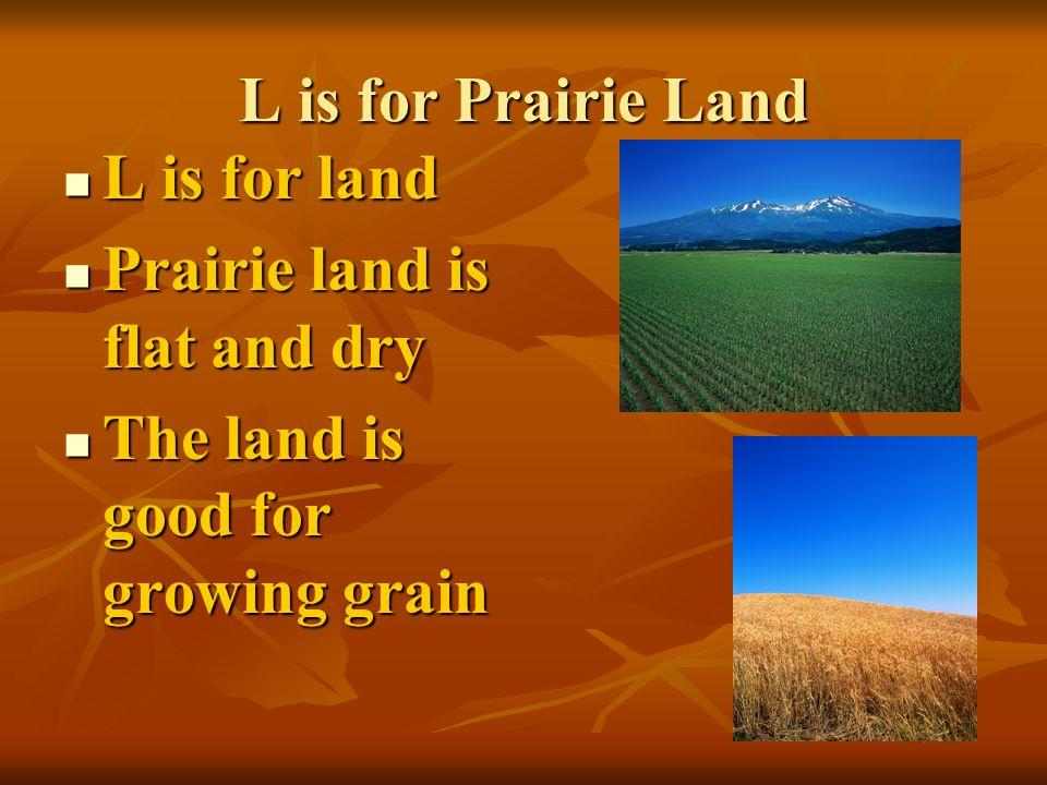 L is for Prairie Land L is for land L is for land Prairie land is flat and dry Prairie land is flat and dry The land is good for growing grain The land is good for growing grain