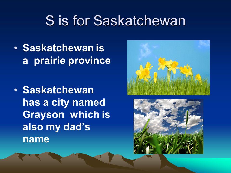 S is for Saskatchewan Saskatchewan is a prairie province Saskatchewan has a city named Grayson which is also my dad's name