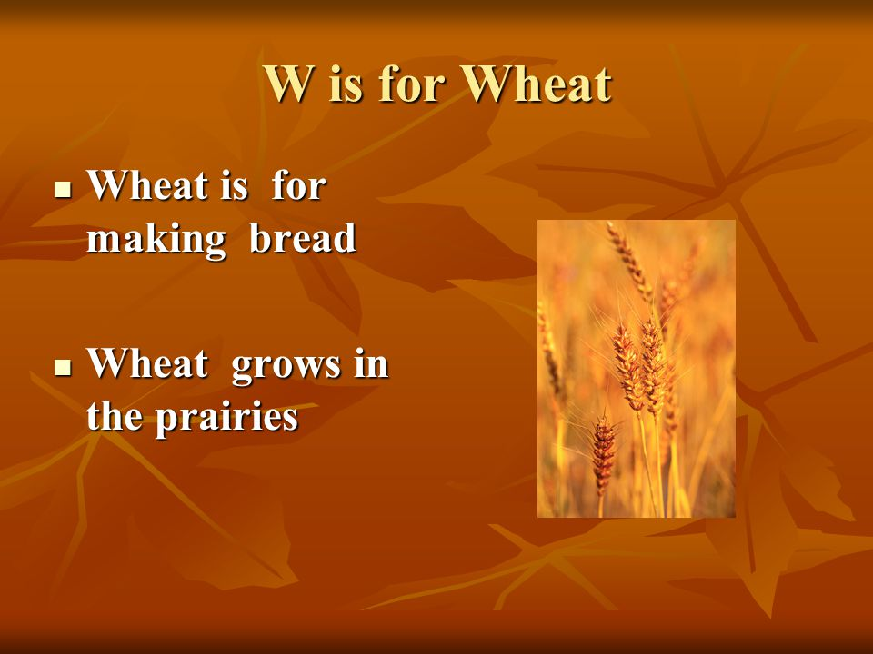 W is for Wheat Wheat is for making bread Wheat is for making bread Wheat grows in the prairies Wheat grows in the prairies