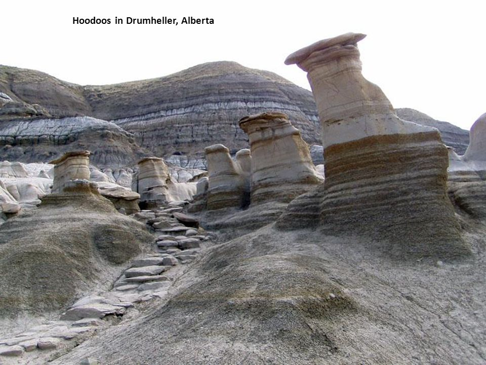 Dinosaur Provincial Park, Alberta
