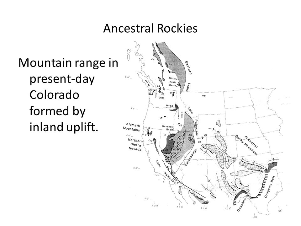 Ancestral Rockies Mountain range in present-day Colorado formed by inland uplift.