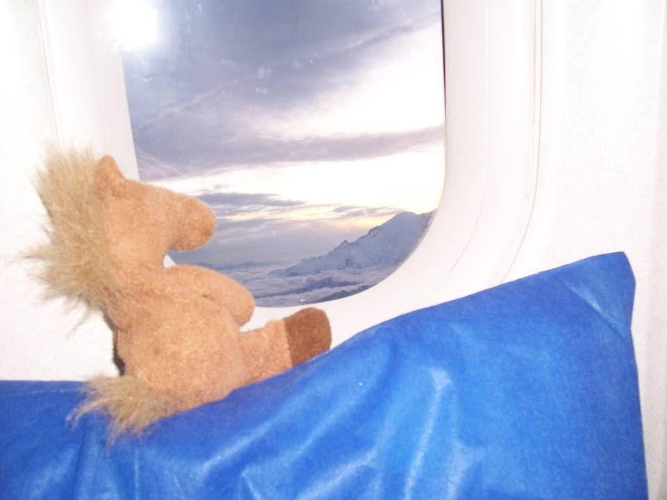 Still looking at Mt Rainier.
