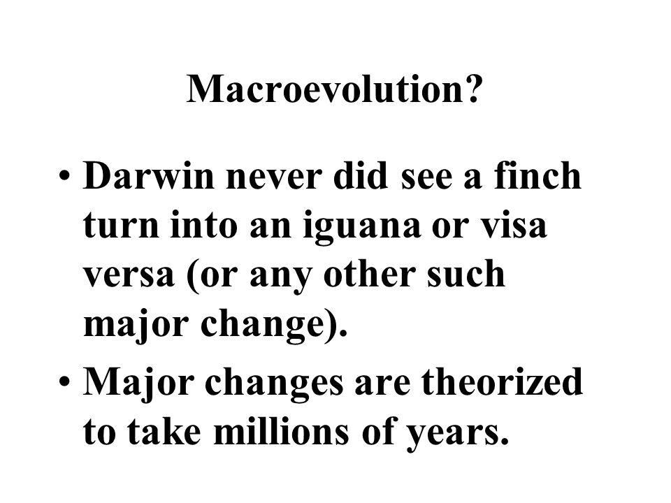 Macroevolution.