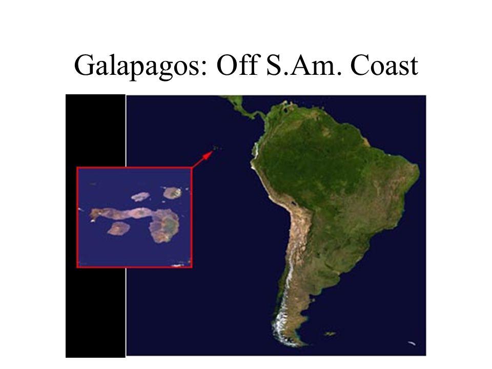 Galapagos: Off S.Am. Coast
