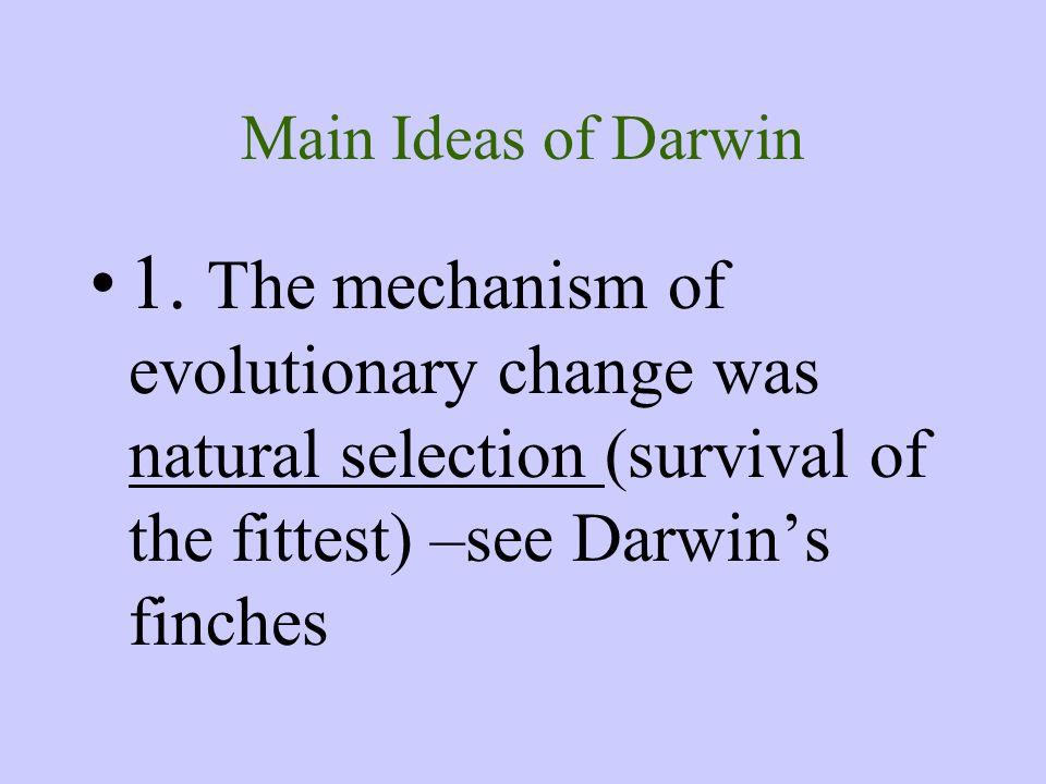Main Ideas of Darwin 1.