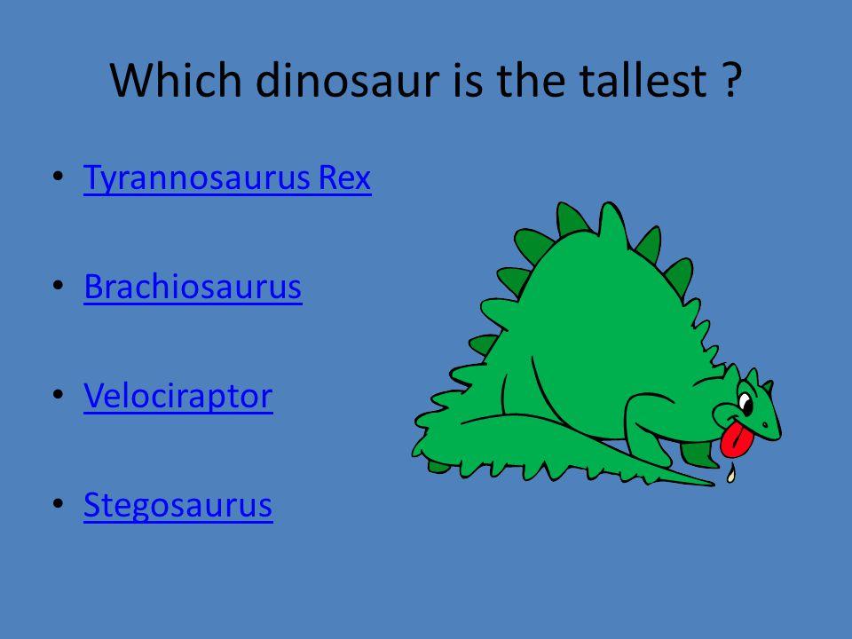 Which dinosaur is the tallest Tyrannosaurus Rex Brachiosaurus Velociraptor Stegosaurus
